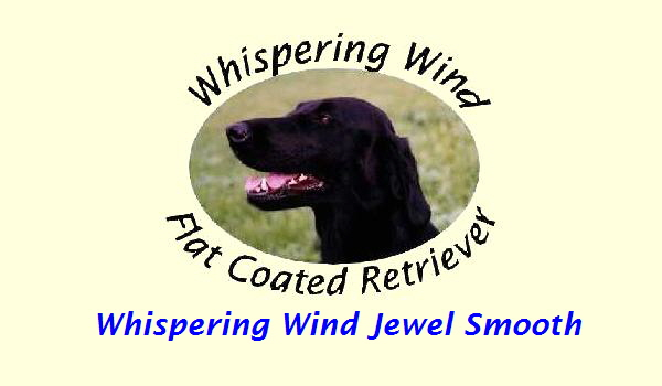 Whispering Wind Jewel Smooth