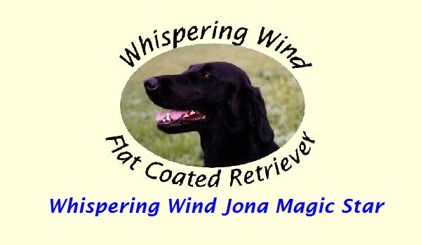 Whispering Wind Jona Magic Star