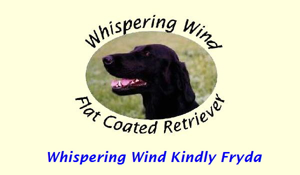 Whispering Wind Kindly Fryda